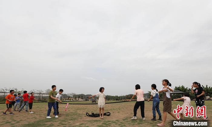 """广东港青""""农夫"""":脚踩泥土,""""耕""""出大湾区农业新路"""